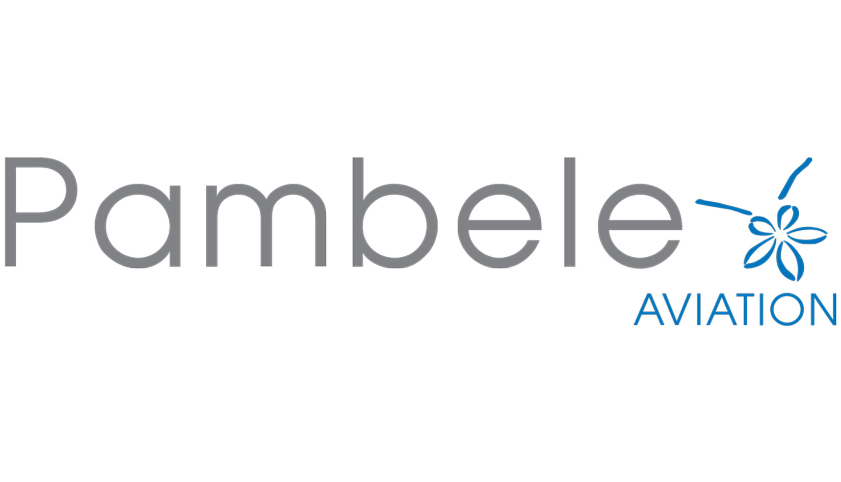 Pambele Aviation Services